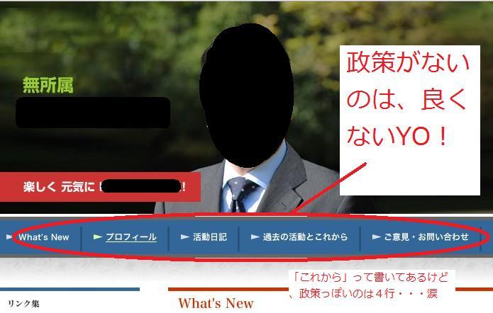 政策レス議員例.jpg